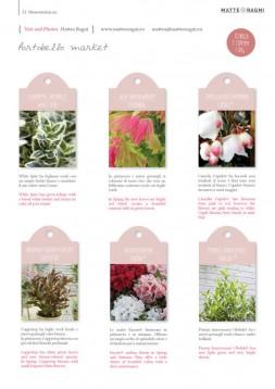 28_Blossom zine pag 52_Spring 2020_2 web