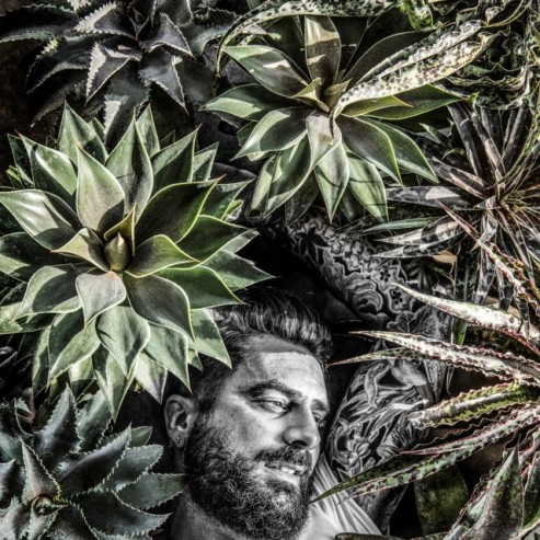 Michal Perry, Mr Plantgeek, l'ambasciatore delle Mangave