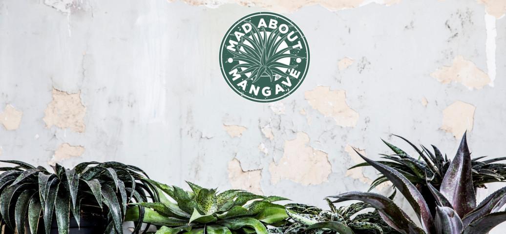 Mangave Logo WEB