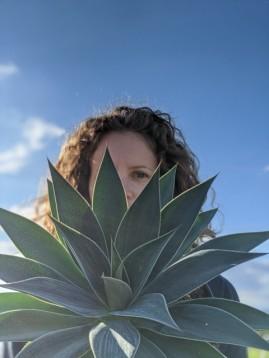 Sudkultur Mangave beauties_Sabine Geier_Mangave Lavander Lady_Plantipp3 WEB