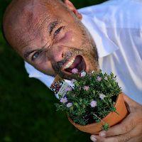 la voce delle piante
