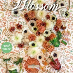 COVER SPRING Blossom zine N 24 Spring br web