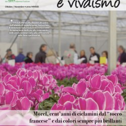 COVER_407 WEB