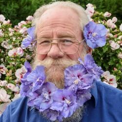 Dr Roderick Woods - Hibiscus Blue Chiffon